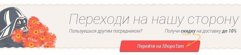 Shopotam — лучший посредник для доставки
