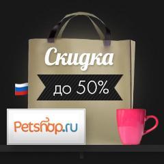 chernaya-pyatnica-koroleva-rasprodazh (25)